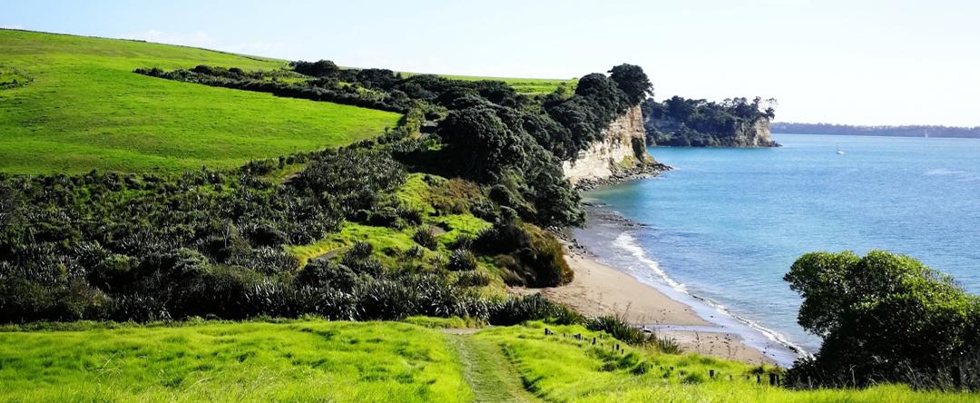 Long Bay coastal walkway