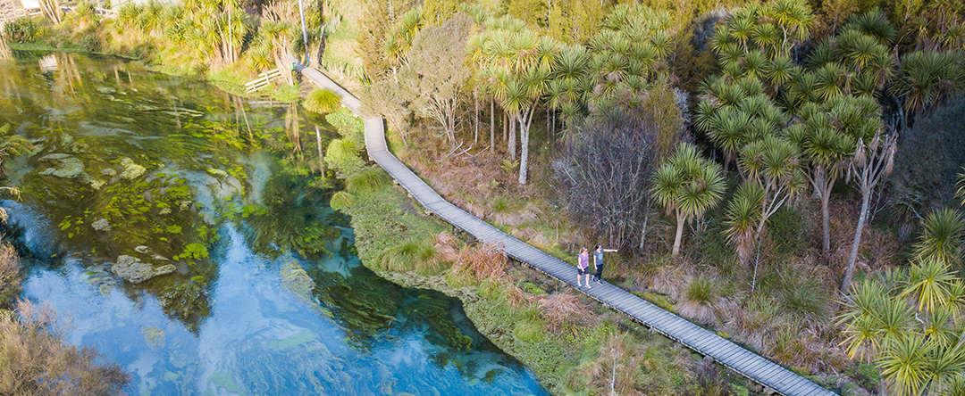 Blue Spring - Te Waihou Walkway