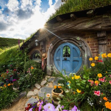 Hobbiton Movie